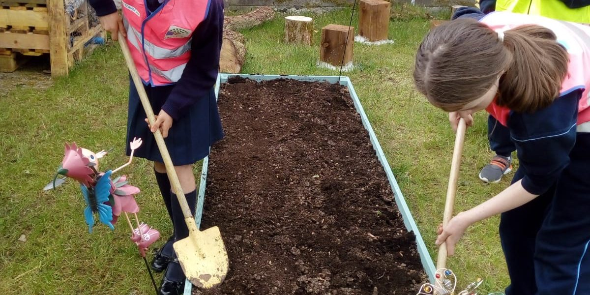 Green Schools have Green Fingers! - Mercy Convent Naas